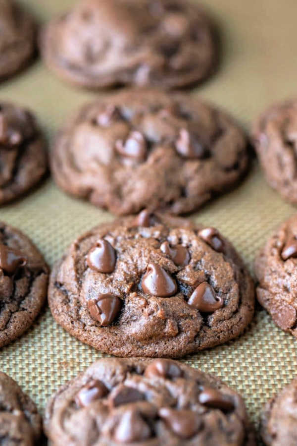 Peanut Butter Chocolate Chip Cookies on a plate fresh from the oven